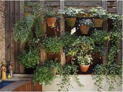 Những kiểu vườn tiết kiệm diện tích | ảnh 3