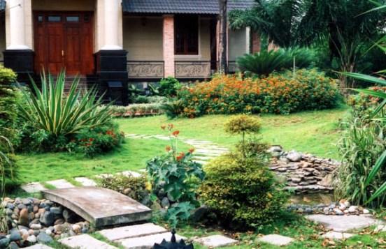 Góc vườn nhỏ xinh điểm tô cho ngôi nhà | ảnh 4