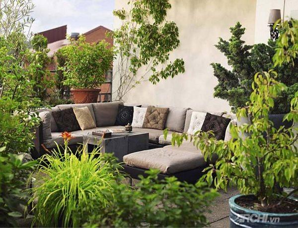 Phủ xanh cho patio | ảnh 1