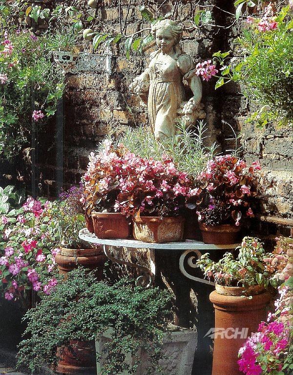 Phủ xanh cho patio | ảnh 7