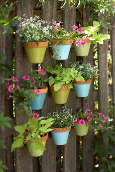 Vườn xinh cho nhà nhỏ | ảnh 7