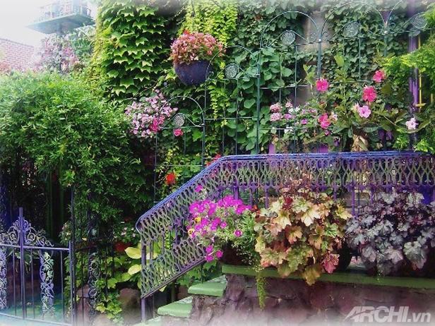 Lối vào nhà rực rỡ sắc hoa | ảnh 2