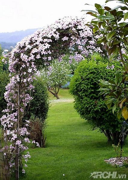 Những mẫu cổng đẹp cho biệt thự nhà vườn | ảnh 9