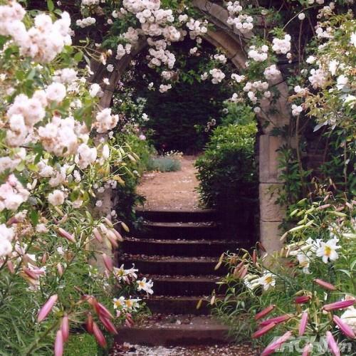 Những mẫu cổng đẹp cho biệt thự nhà vườn | ảnh 10
