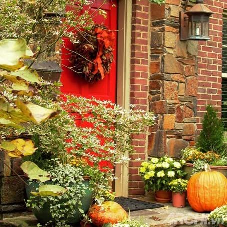 Những hiên nhà mùa thu lãng mạn | ảnh 4