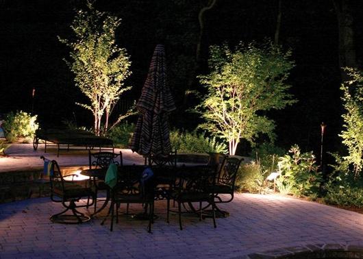 Ngôi nhà vườn và phong cách sống hiện đại | ảnh 4