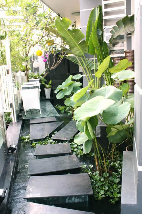 Ngoại thất sân vườn trong nhà hiện đại | ảnh 3