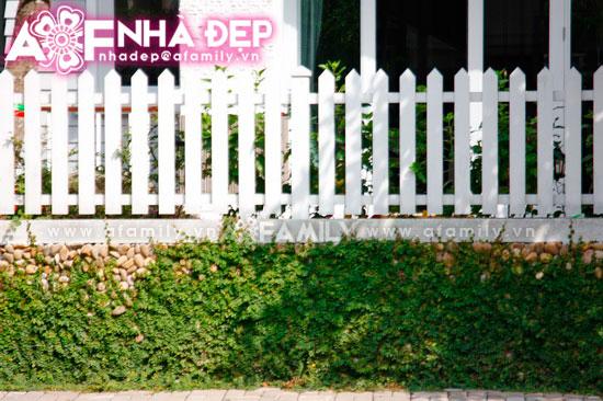 Những kiểu hàng rào kim loại làm duyên cho ngôi nhà | ảnh 9