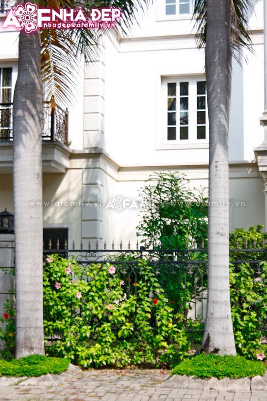 Những kiểu hàng rào kim loại làm duyên cho ngôi nhà | ảnh 11