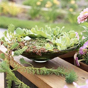Trang trí cho khu vườn bằng những chậu nước nhỏ | ảnh 2