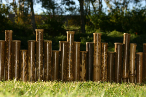 Giản dị và thanh bình với hàng rào tre | ảnh 8
