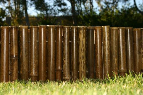 Giản dị và thanh bình với hàng rào tre | ảnh 11