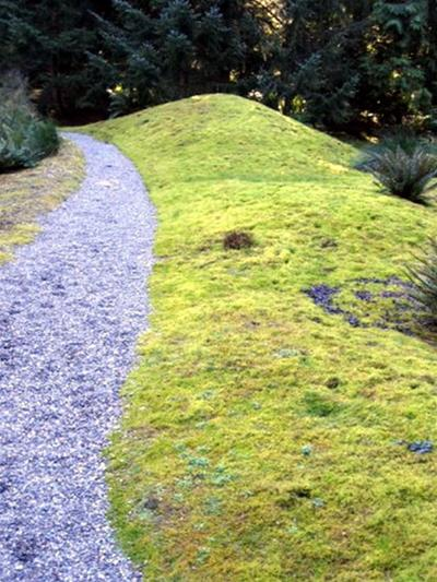 Lối đi tràn ngập hoa cỏ | ảnh 4