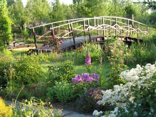 Cầu nhỏ - điểm nhấn cho nhà vườn | ảnh 5