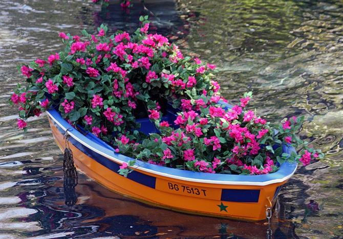 Lãng mạn với thuyền hoa | ảnh 1