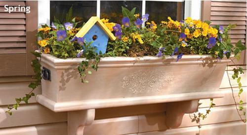 Vườn hoa cực xinh bên cửa sổ | ảnh 12