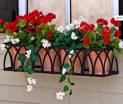 Vườn hoa cực xinh bên cửa sổ | ảnh 16