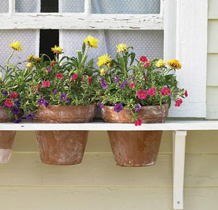Vườn hoa cực xinh bên cửa sổ | ảnh 1