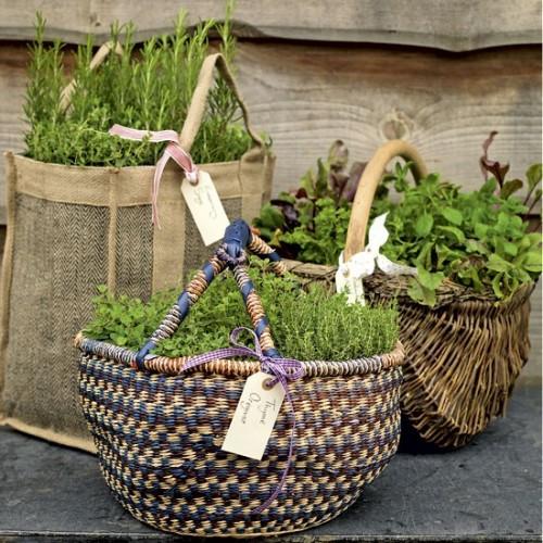Vườn rau mini đẹp và tiện dụng | ảnh 10