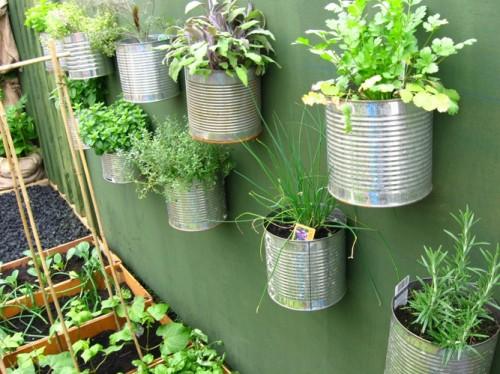 Vườn rau mini đẹp và tiện dụng | ảnh 12