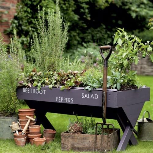 Vườn rau mini đẹp và tiện dụng | ảnh 2