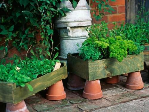 Vườn rau mini đẹp và tiện dụng | ảnh 3