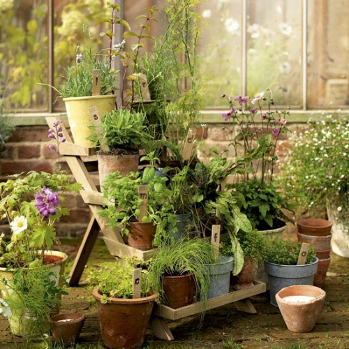 Vườn rau mini đẹp và tiện dụng | ảnh 5