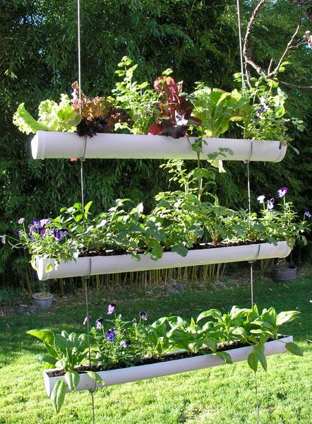 Vườn rau mini đẹp và tiện dụng | ảnh 6