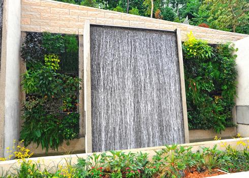 Vườn cây xanh trên tường nhà | ảnh 5