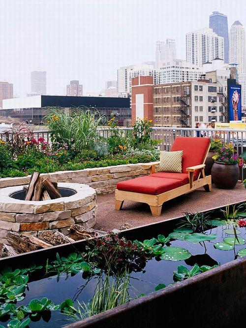 Tạo khu vườn xanh mát trên sân thượng | ảnh 6