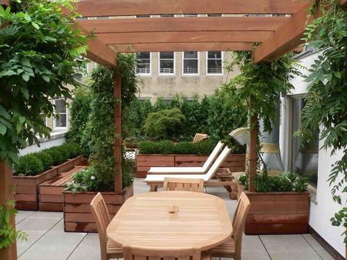 Tạo khu vườn xanh mát trên sân thượng | ảnh 7