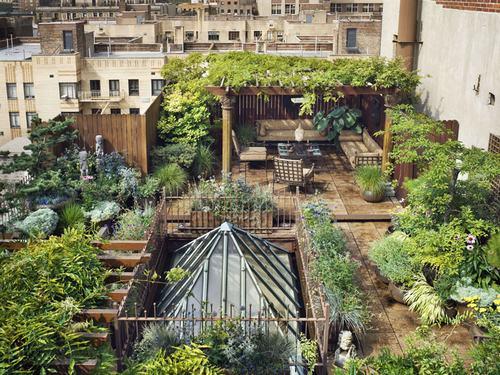 Tạo khu vườn xanh mát trên sân thượng | ảnh 8