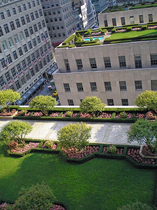 Tạo khu vườn xanh mát trên sân thượng | ảnh 12
