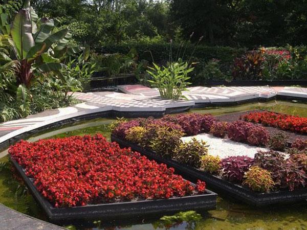 14 mẫu vườn đẹp cho biệt thự và nhà vườn | ảnh 3