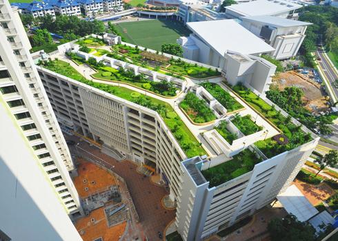 Phủ xanh nóc nhà cao tầng với công viên mini | ảnh 1