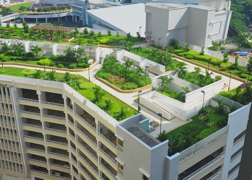Phủ xanh nóc nhà cao tầng với công viên mini | ảnh 2