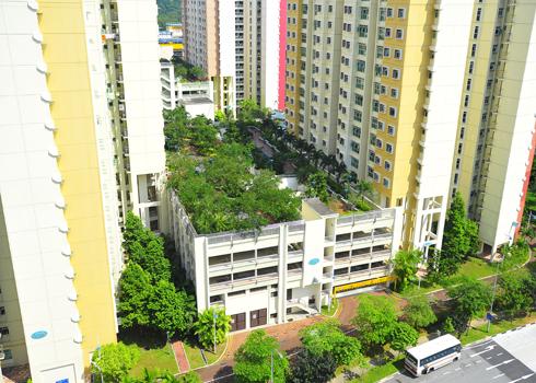 Phủ xanh nóc nhà cao tầng với công viên mini | ảnh 7