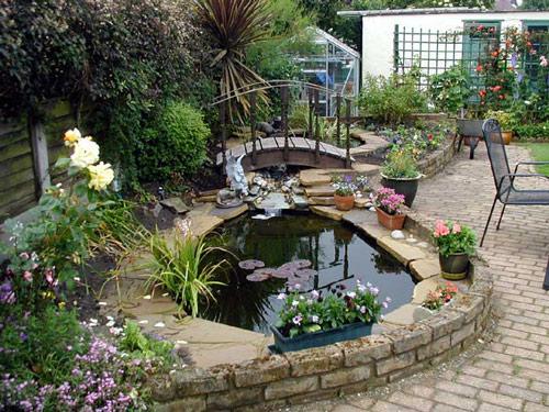 Một vài ý tưởng mang ao nhỏ vào nhà vườn | ảnh 2