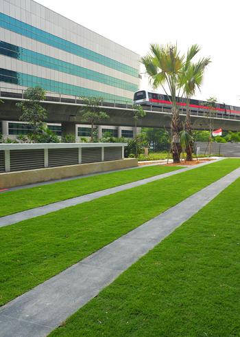 Không gian xanh cho bãi đỗ xe | ảnh 1