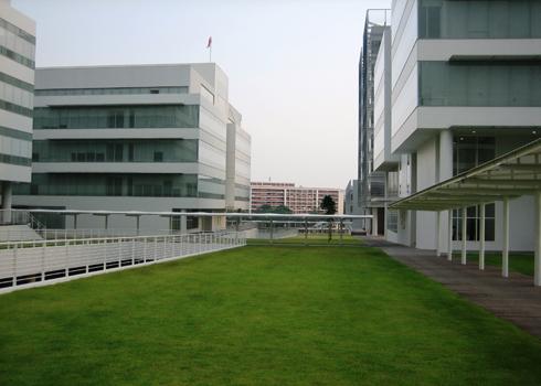 Không gian xanh cho bãi đỗ xe   ảnh 4