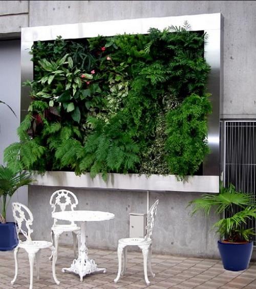 Thiết kế tường xanh: Xu hướng hiệu quả trong kiến trúc | ảnh 1