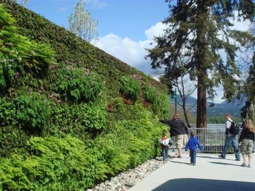 Thiết kế tường xanh: Xu hướng hiệu quả trong kiến trúc | ảnh 2