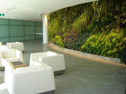 Thiết kế tường xanh: Xu hướng hiệu quả trong kiến trúc | ảnh 3