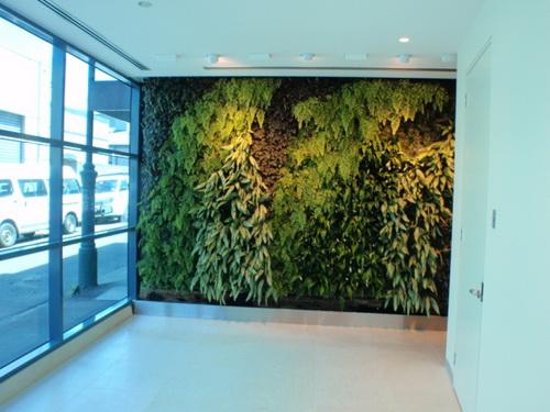 Thiết kế tường xanh: Xu hướng hiệu quả trong kiến trúc | ảnh 7
