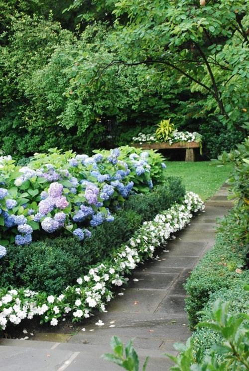 Tạo lối đi trong vườn với một màu xanh mướt | ảnh 3