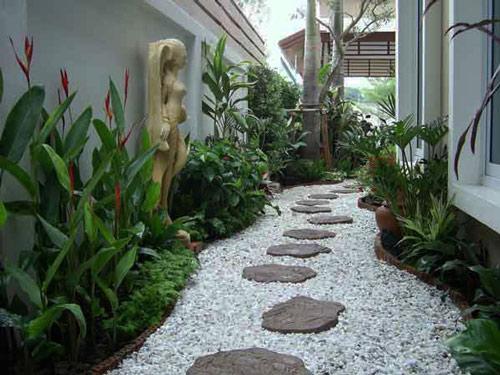 Tạo lối đi trong vườn với một màu xanh mướt | ảnh 6
