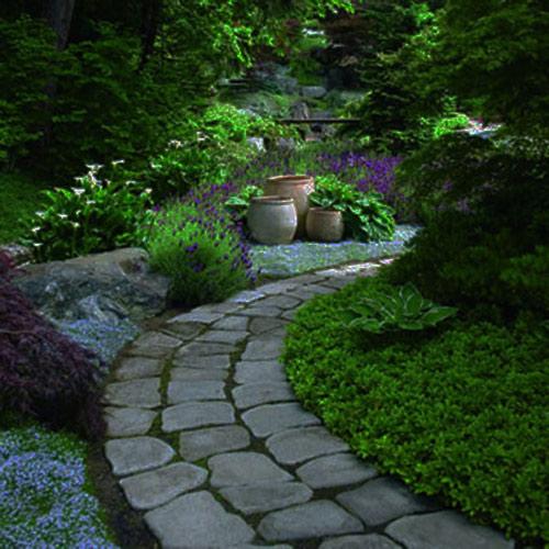 Tạo lối đi trong vườn với một màu xanh mướt | ảnh 10