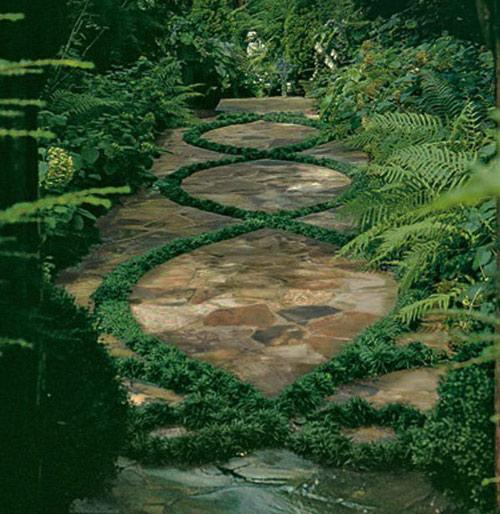 Tạo lối đi trong vườn với một màu xanh mướt | ảnh 11