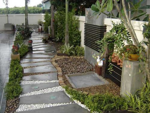 Tạo lối đi trong vườn với một màu xanh mướt | ảnh 12