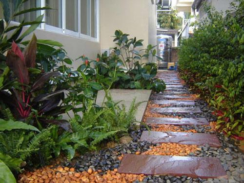 Tạo lối đi trong vườn với một màu xanh mướt | ảnh 14